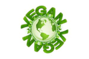 vegan supplements & vitamins